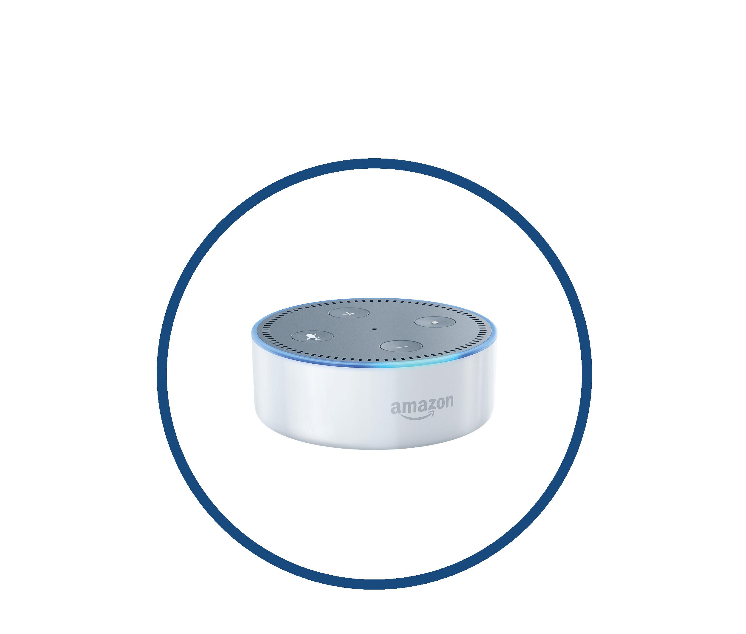 IoE Integration Icon - AlexaSkill